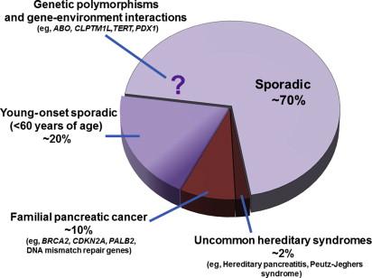 Factori de risc în cancerul pancreatic | topvacanta.ro