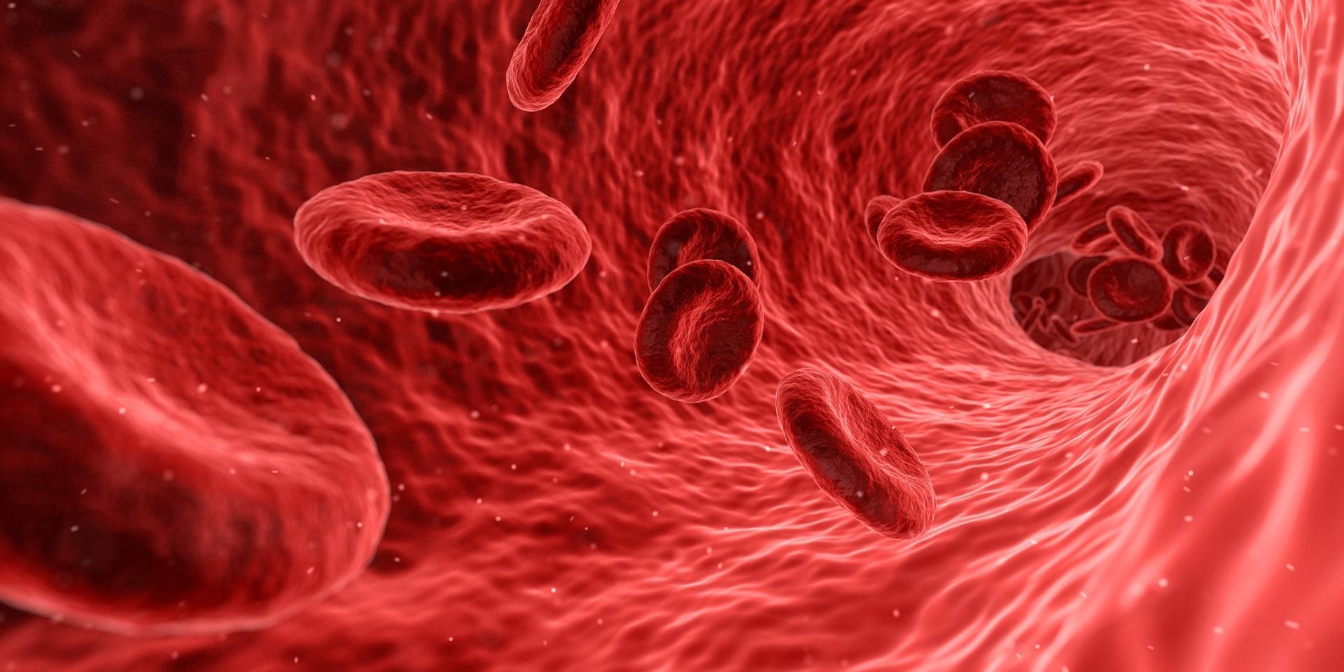 z ceho je anemie