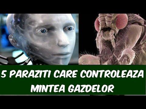 gastroenterolog tratează paraziții