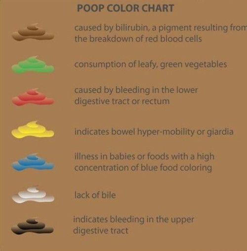 Ossiuri rimedi naturali efficaci - Giardia poop baby