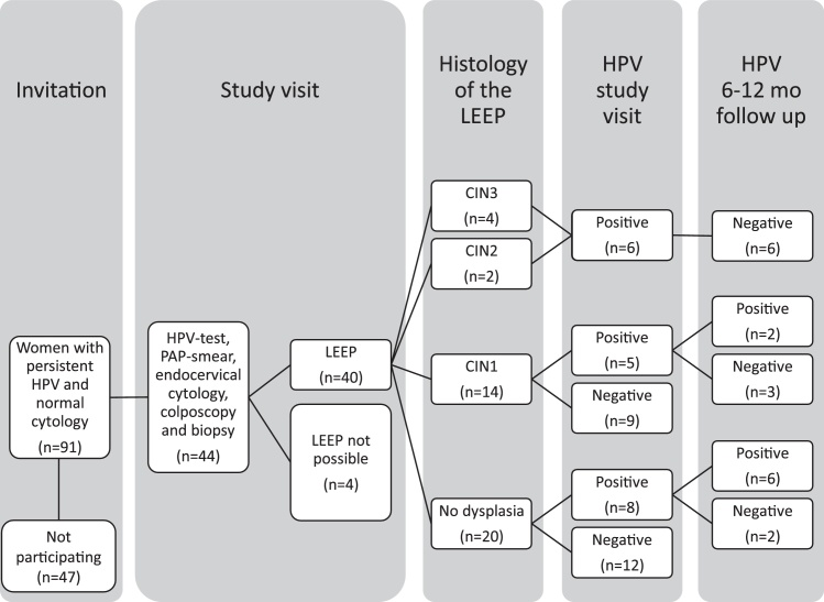 hpv virus and leep procedure