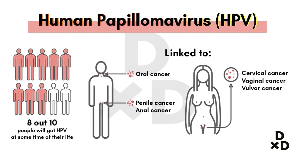 Human papillomavirus vaccine facts