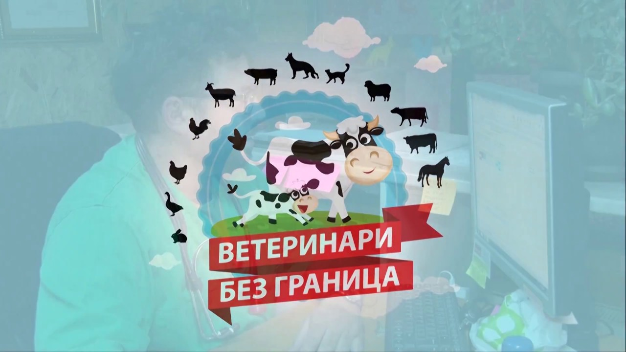 Paraziti kod ovaca, Гостевая книга | СОКОЛОВ Вениамин Сергеевич
