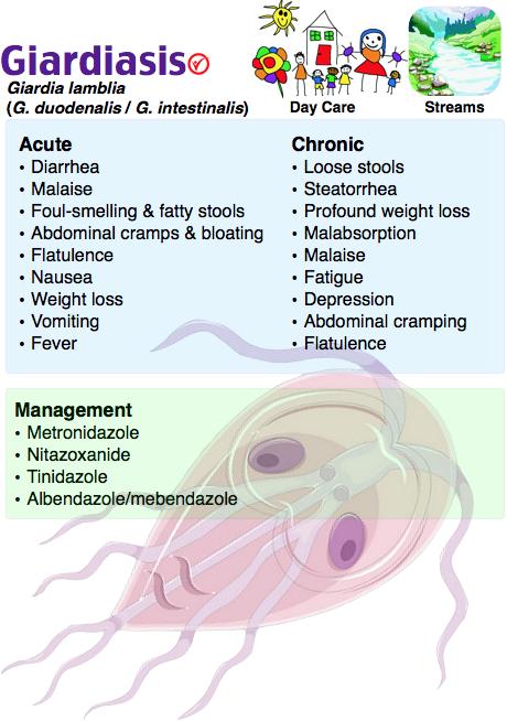 simptomele giardiei féver