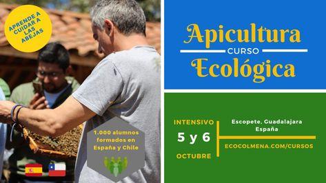 Colegiul de Medicină Veterinară și Economie Agrară din Brătușeni