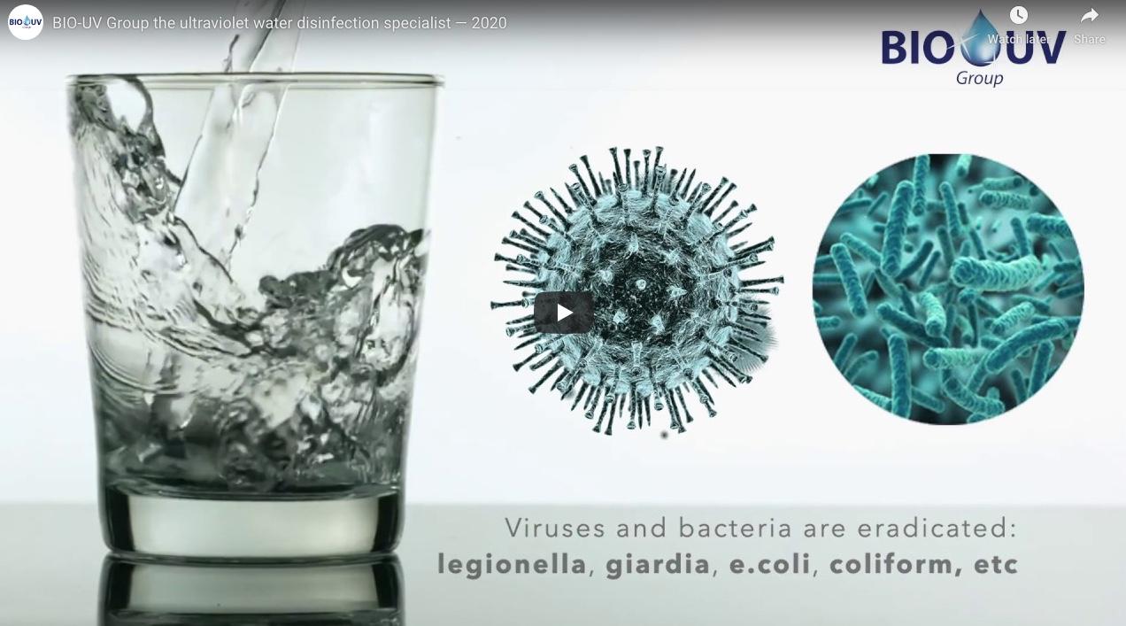 virusul giardiei sau bacteriile