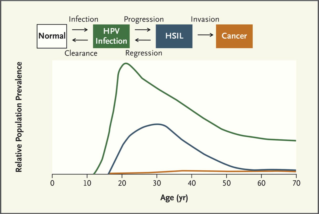 papillomavirus and age când să bei comprimate parazite