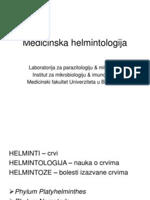 Dezvăluie simptome de infecție helmintice la adulți Infecție helmintică a bolii