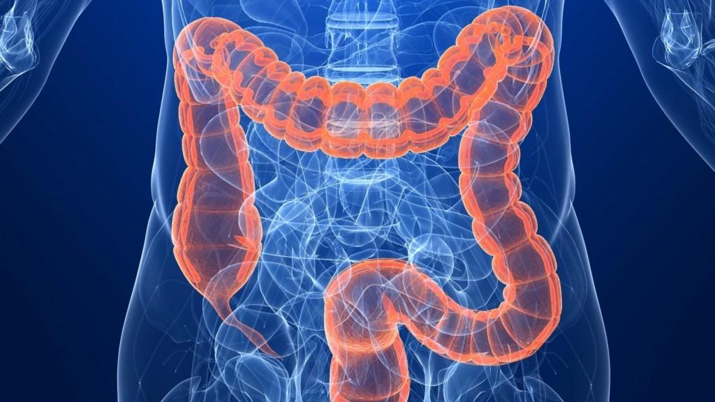 curatarea colonului si detoxifierea organsimului, Paraziți pentru irigarea colonului