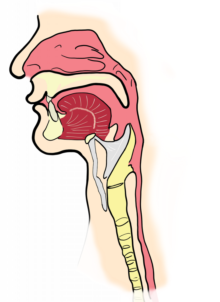 cancer laringian tratament cancerul colorectal sporadic