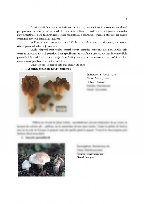 ciuperci clasa 5 panglica vierme rotunde