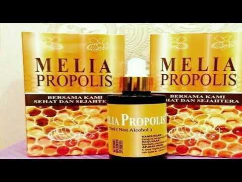 Utilizarea de propolis în tratamentul paraziților