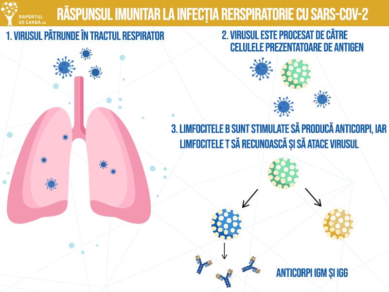 Ce este imunitatea și ce putem face pentru o imunitate crescută
